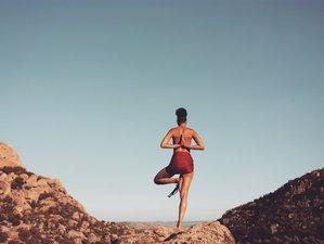 18 Days 200-Hour Shivakali Vinyasa Yoga Teacher Training in California