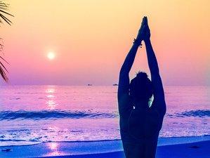 7 Day Bhakti-Style Yoga Holiday in Santa Teresa, Puntarenas
