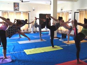 30 Days 200-hour Scholarship Yoga Teacher Training in Uttarkashi, India