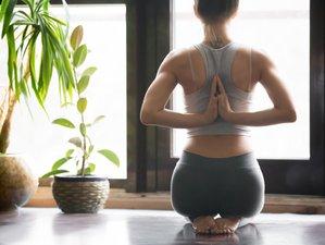 3-Daags Vinyasa en Yin Yoga Kampeerweekend in Friesland, Nederland