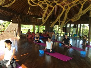 7 Days Mind and Body Detox Yoga Group Retreat in Bali