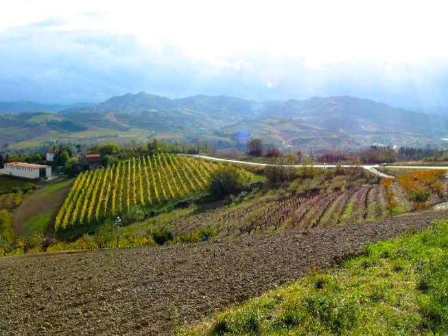 6 Days Seafood Tour and Cooking Holidays in Italy