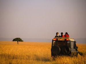 6 Days Classic Safari in Kenya