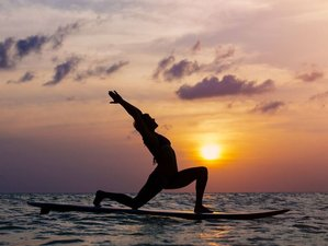 5 Days SUP Yoga Retreat in Wijk aan Zee, Netherlands