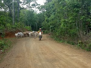 5 Days Ride Off-the-Beaten-Tracks Guided Dirt Bike Tour in Thailand