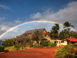 8 Days Embody Life Yoga Retreat in Hawaii