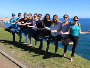 19 Days 200-Hour Yoga Teacher Training in Northland, New Zealand
