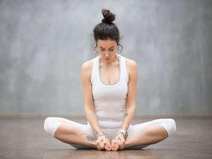 11 Days Intensive Hatha Yoga Workshop in Grand Gaube, Mauritius
