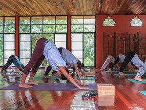 22 días 220hr profesorado de yoga en Chiang Rai, Tailandia