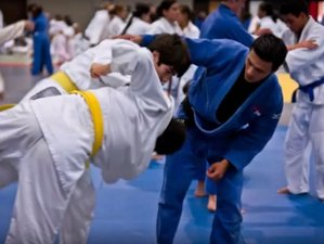 7 Days Judo Training Camp in New York City, USA