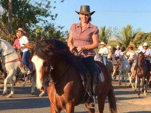 4 Day Exploring Horse Riding and Ranch Vacation in Tambor, Puntarenas