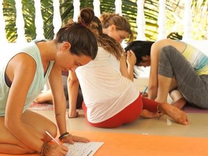 24 Day 300 Hours of Ashtanga Vinyasa Yoga Teacher Training Goa