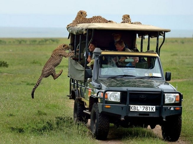 10 Days Tanzania and Kenya Safari
