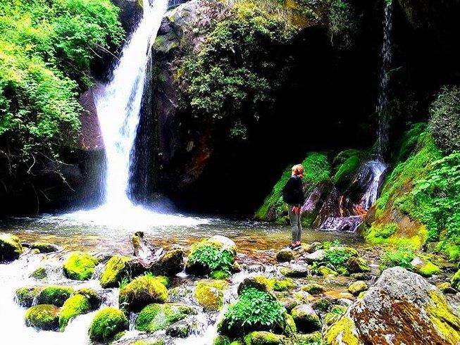 8 Tage Atemarbeit, Meditation und Yoga Retreat im Himalaya, Indien