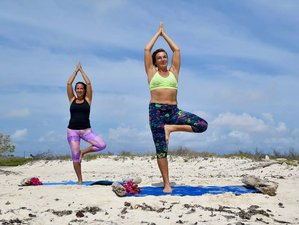 8 Days Meditation and Yoga Retreat in Caribbean