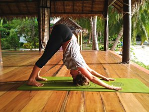 14 Days Healthy Living Yoga Retreat in Koh Phangan, Thailand
