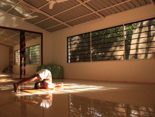 13 días retiro de yoga y meditación en la India