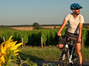 7 Days Wine, Sightseeing and Cycling Tour in Loire Valley, France