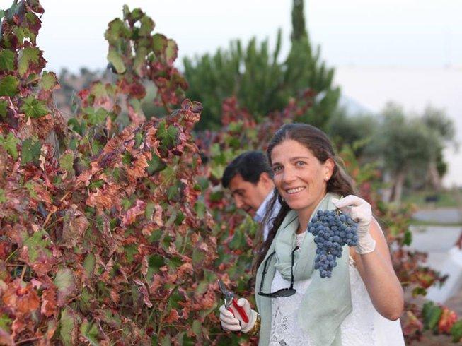 2 Days Alentejo Wine Tour in Portugal