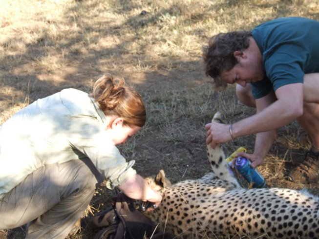 14 Days Conservation Safari South Africa