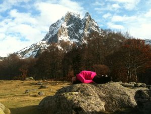 13 Days 100 hour Yin Yoga Teacher Training in France