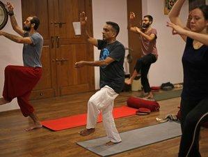 27 Days 200-Hour Yoga Alliance USA Hatha Yoga Teacher Training in India