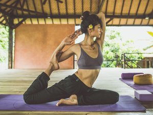 6 Day Digital Detox Retreat with Meditation and Yoga at Desa Saya in Buleleng Regency, Bali