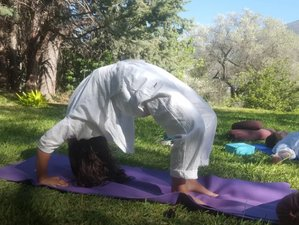 7 Day Rejuvenation Retreat with Yoga & Healthy Raw Food in Orgiva, Andalusia
