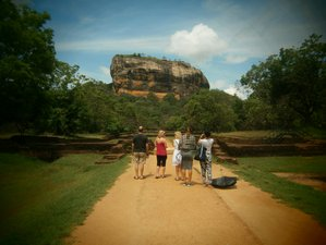 10 Days Sightseeing, Massage and Yoga Retreat Sri Lanka