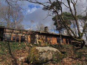 3 jours en week-end de yoga et hypnose en pleine nature dans la forêt de Fontainebleau