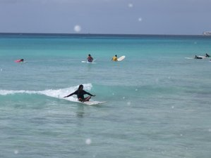 7 Days Intermediate Surf Camp in Bridgetown, Barbados