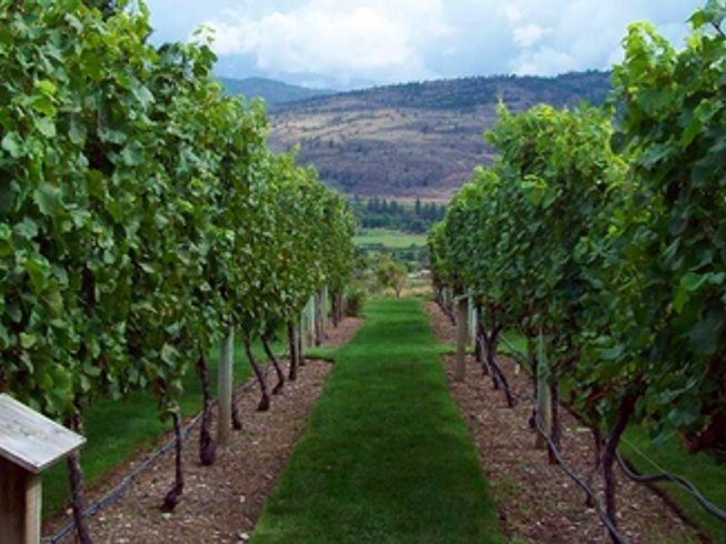 3 Days Wine and Yoga Retreat in Canada