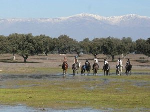 3 Day Monfragüe National Park Route Horse Riding Holiday in Extremadura