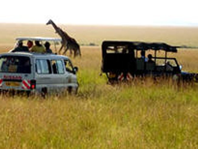 3 Days Masai Mara Budget Safari in Kenya