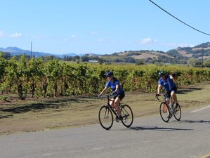 4 Days Classic Napa Luxury Bike Tour and Wine Holiday in California, USA