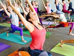 7-Daagse Holistische Genezing Yoga Retreat in Goa, India