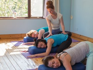 7 Day Mindfulness Meditation and Vinyasa Yoga Retreat in Kinvarra, County Galway