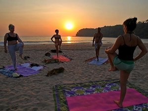 18 Day Meditation and Yoga Retreat with Energy Breathing and Vipassana in Goa