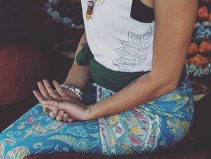 22 Days Zazyoga 200-Hour Mindful Movement Yoga Teacher Training in Bali, Indonesia