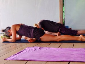 28 Days Intensive Yoga and Meditation Retreats in Thailand