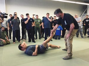 2 Days Systema Seminar with Vladimir Vasiliev in the UK
