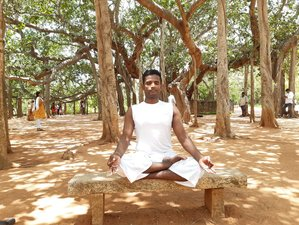 24 Day 200-Hour Yoga Teacher Training course near Aurovile, in Tamil Nadu