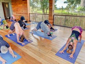 29 Days 200 Hours Intensive Quantum Yoga Teacher Training in Goa, India