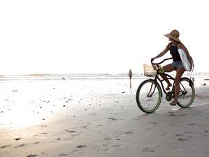 7 Days Yoga and Surf Camp in Playa Santa Teresa, Costa Rica