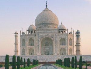 15 días retiro de yoga y turismo en la India