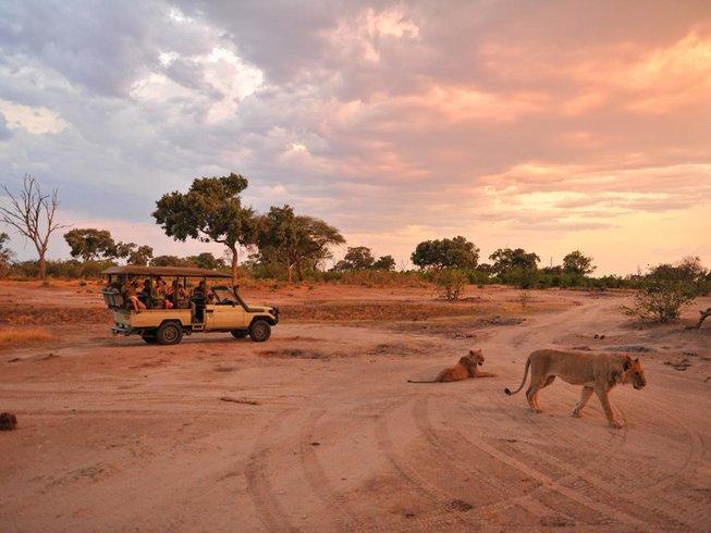 13 Days Walking Safari in Botswana and Zimbabwe