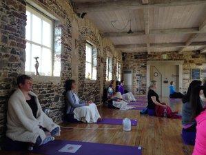 3 Days Yoga and Wellness Retreat Get Away from Life's Hustle in Macreddin Village, Ireland