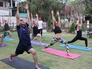 22 días, 200 horas de profesorado de yoga Hatha y Ashtanga en Rishikesh, India (Spanish)
