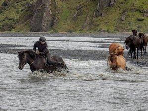 6 Day Classic Þórsmörk Horse Riding Tour in Hvolsvöllur, Rangárþing eystra