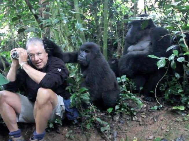 7 Days Gorilla Safari in Uganda